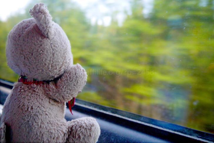 電車内のクマのぬいぐるみ