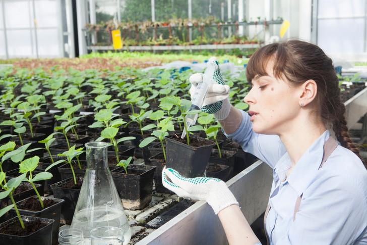 肥料を与える女性